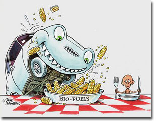 bio-fuels_food_competition